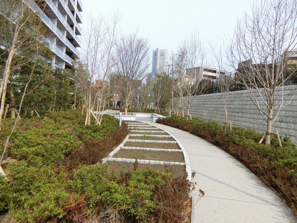 敷地南側の菜園テラス