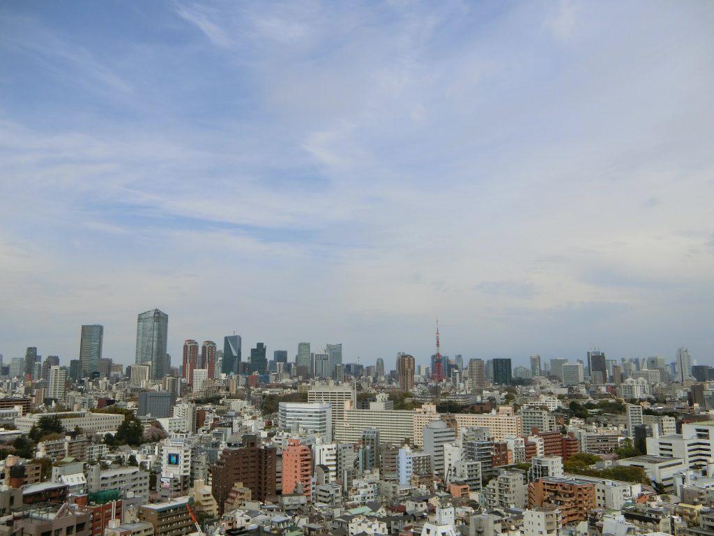 シティタワー恵比寿の住戸内からの眺望