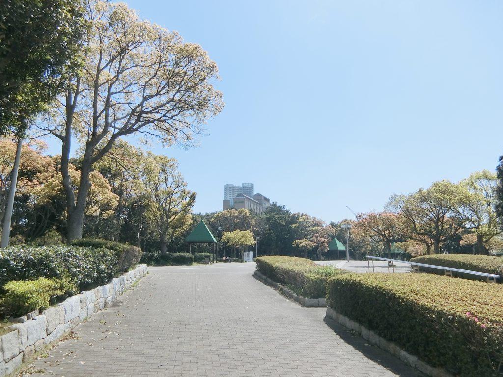 幕張新都心の公園緑地