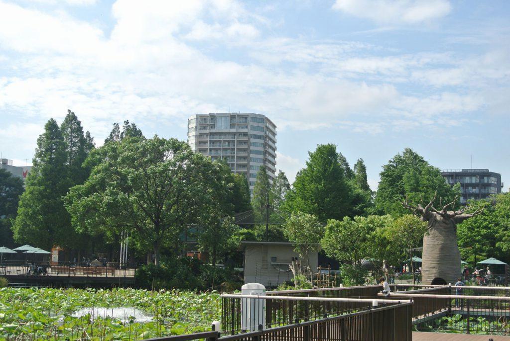 文京区のタワーレジデンス「ザ・ライオンズ上野の森」