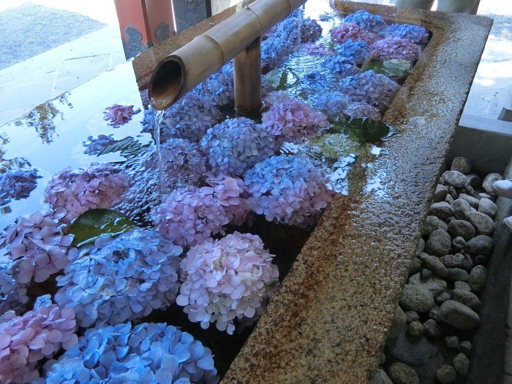鶴岡八幡宮の手水舎