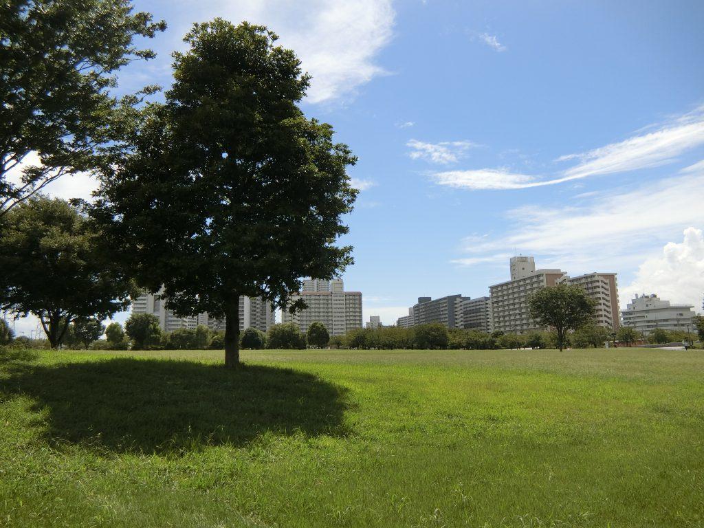 「都立大島小松川公園」