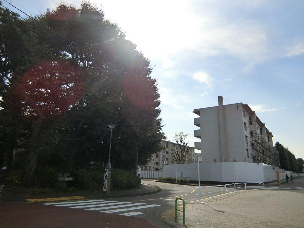退去が終わった石神井公園団地の建物