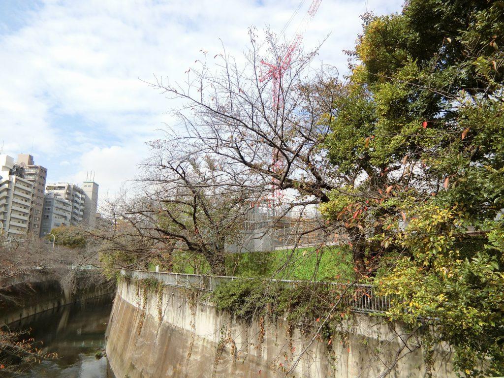 「ブリリアシティ西早稲田」の建設地