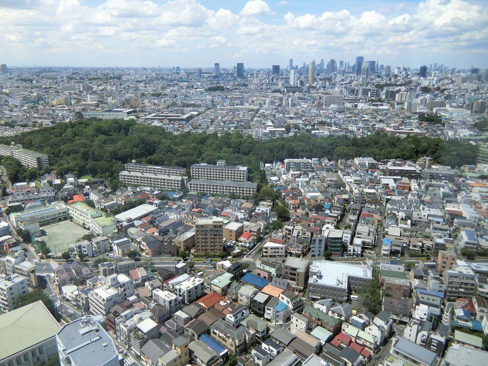 シティタワー武蔵小山のスカイラウンジからの景色(林試の森方面)